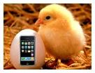 iPhone in Italia – Pasqua sarà la volta buona?