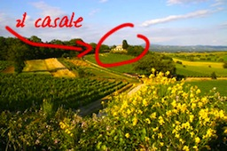 Enjoy learning in Toscana: relax, benessere, iPhone e Mac